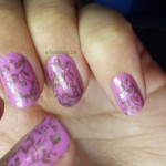 #31DC2013 Delicate nails