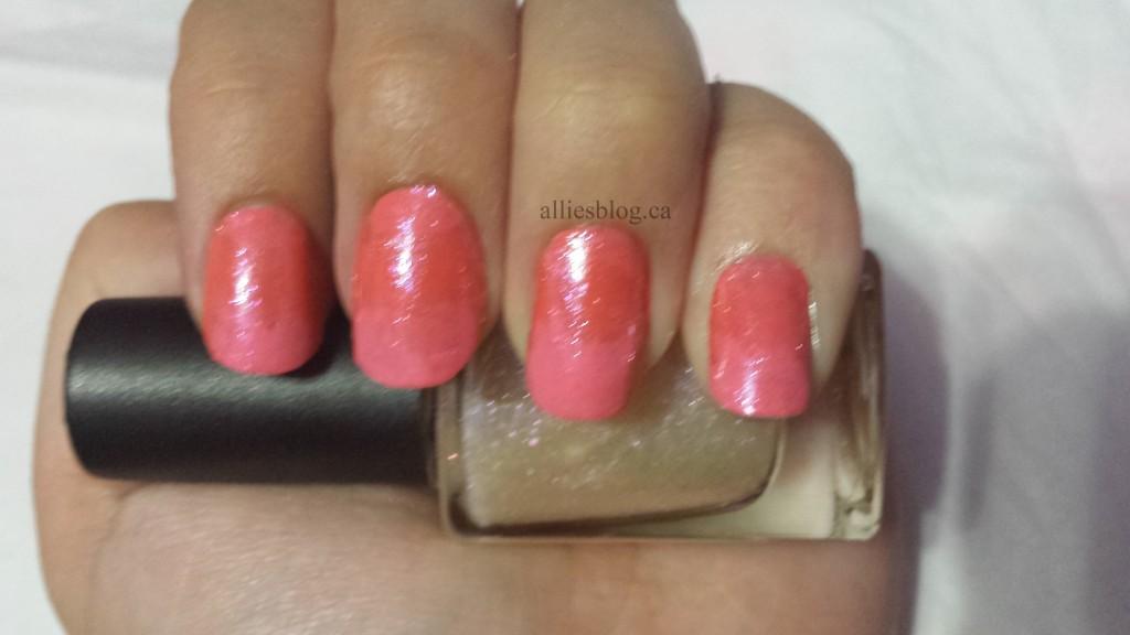 #31DC2013 Gradient Nails
